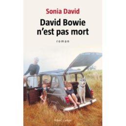 David Bowie n'est pas mort – Sonia DAVID