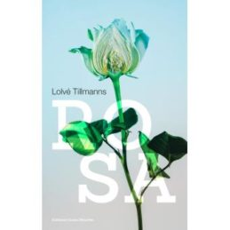 Rosa – Lolvé TILLMANNS