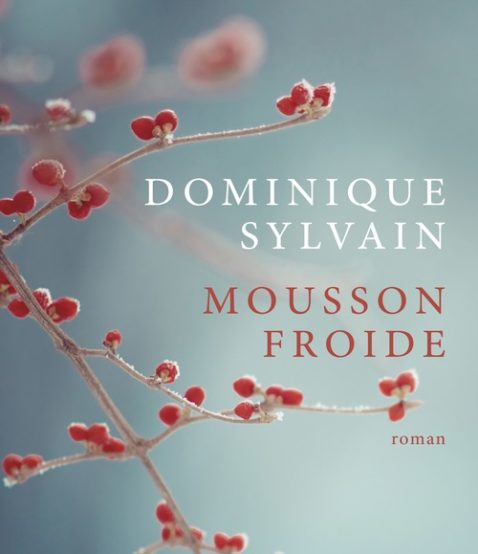 mousson-froide-dominique-sylvain